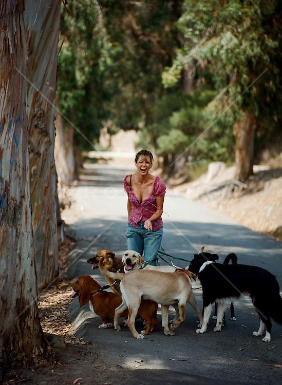 woman enjoying a walk with many many dogs