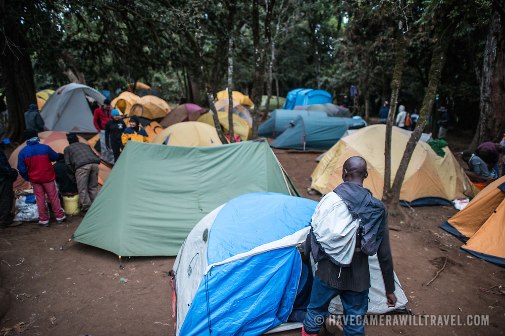 Campground at Big Tree Camp (formally known as Forest Camp) on the first night of a climb up Mount Kilimanjaro along the Lemosho Route.