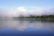 morning fog over lake shoreline; summer; atmospheric; Adirondack Park NY