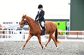 07 - 04th Feb - Dressage