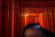 Fushimi Inari Shrine is dominated by the countless rows of red Tori  spreading through the paths in the mountain side.