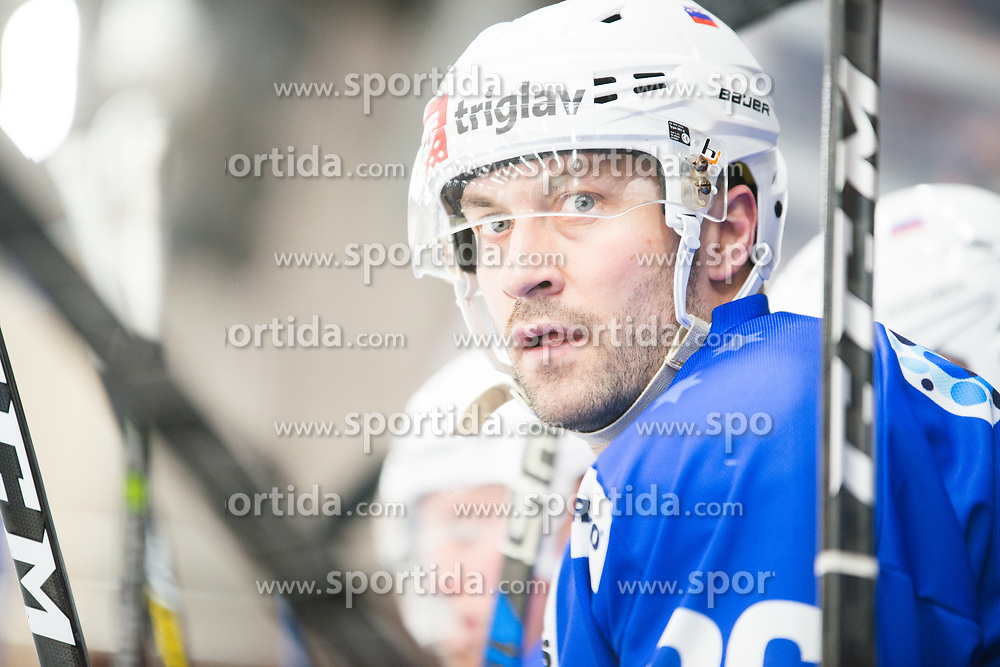 Sabahudin Kovacevic during Ice Hockey match between National teams of Slovenia and Belarus at International tournament Euro ice hockey Challenge 2019, on February 9, 2019 in Ice Arena Bled, Slovenia. Photo by Peter Podobnik / Sportida