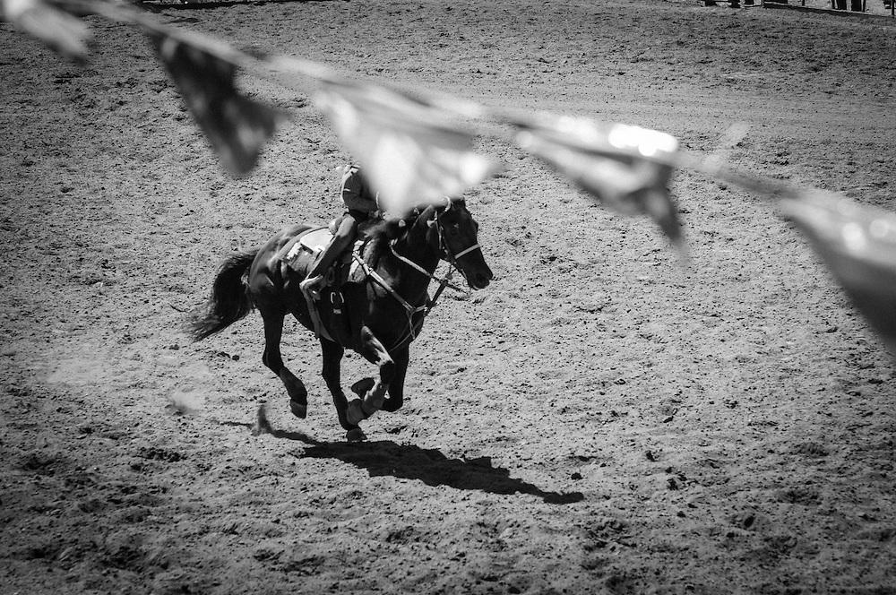 Driscoll Ranch Rodeo. La Honda, CA