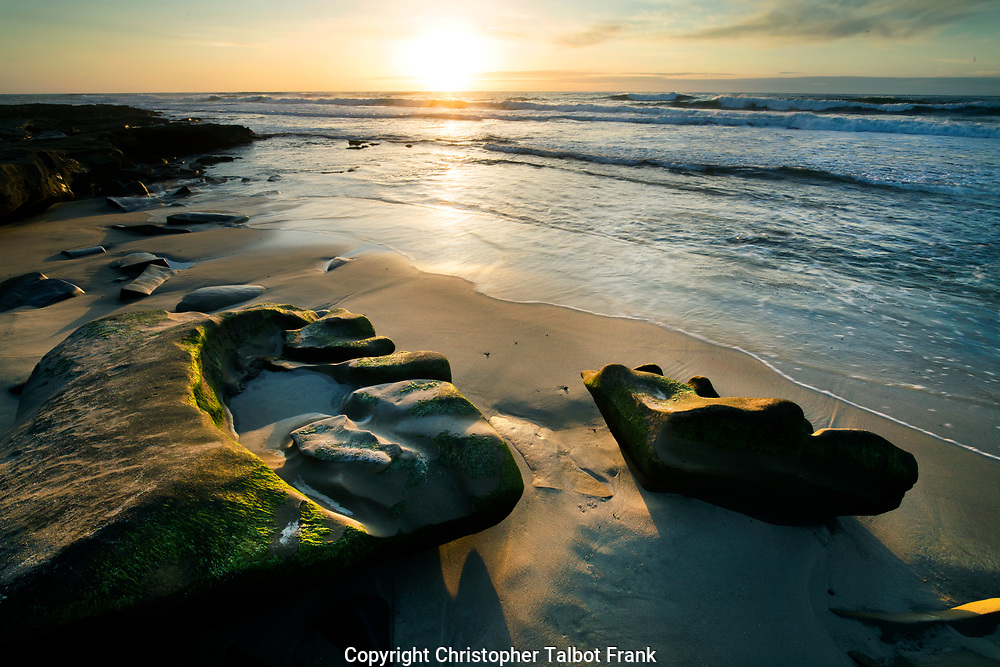 I climbed up on a cliff to get a photo looking down on the strange moss lined rocks on a beach at sunset in La Jolla.   The sun lights up the odd shaped geology and beach while setting over the Pacific Ocean.