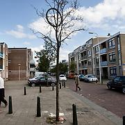 Nederland Den Haag 14 september 2008 Foto: David Rozing .serie achterstandswijk Schilderswijk ..Foto David Rozing/
