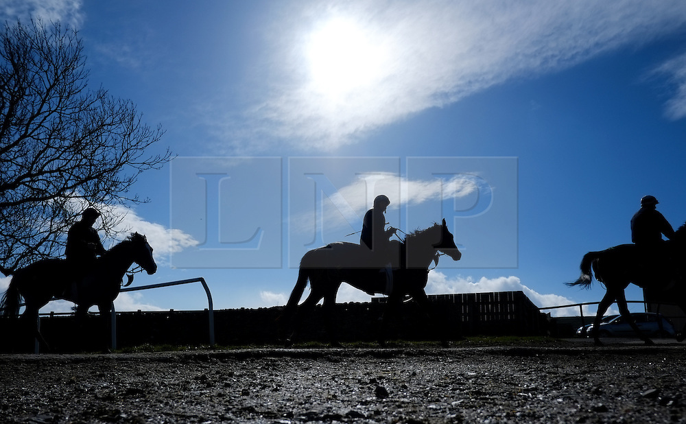 © Licensed to London News Pictures. 22/03/2014<br /> <br /> Middleham, North Yorkshire<br /> <br /> Race horses from the Mark Johnston Stable exercise in Middleham, North Yorkshire. Race horses have been trained in Middleham for over 200 years using the extensive gallops on the high moor. There are currently 15 stables based around the small Yorkshire village.<br /> <br /> Photo credit : Ian Forsyth/LNP