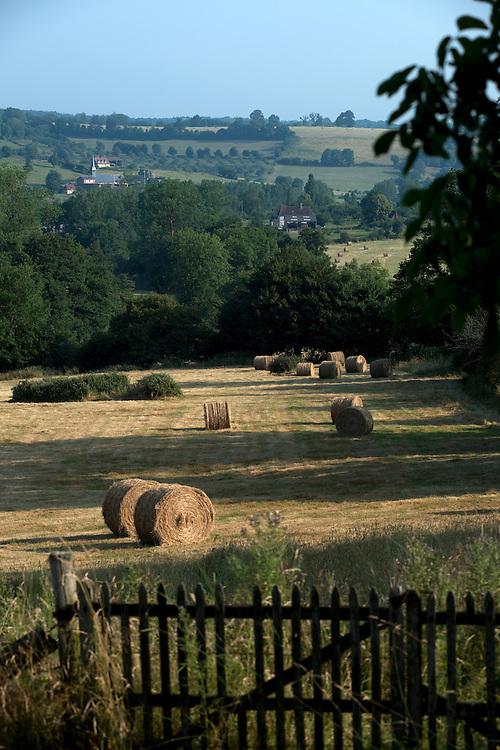 Des balles de foin dans un paysage de bocage typique du Pays d'Auge.<br /> Camembert, France. 21/07/2013.