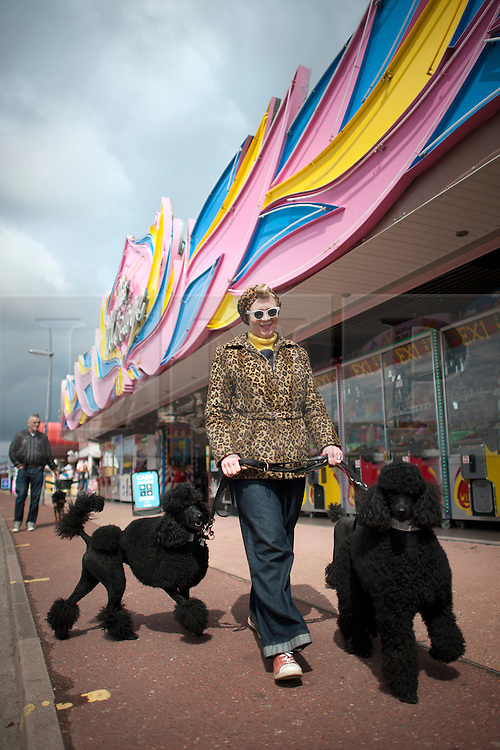 © London News Pictures. 12/05/2013. Hemsby, UK.  Melanie Calland walking her poodles Charlie and Bettie through Hemsby town past the amusements as Rock and Roll enthusiasts gather at the Hemsby Rock 'n' Roll Weekender  in Hemsby, Norfolk. Twice a year rock and roll enthusiasts gather in the grounds of the Authentic 1950s Seacroft Holiday Site to re-live the 50's by dressing in keeping with the period and listening to live bands playing jive, hop, bop and Rock 'n' Roll. Photo credit: Ben Cawthra/LNP