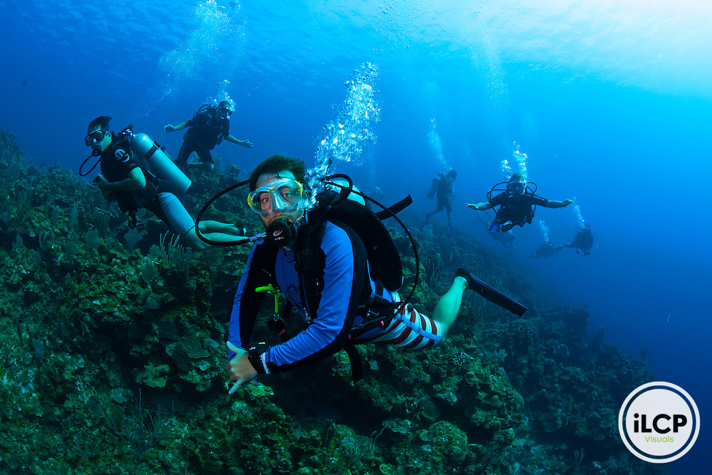 Scuba diving group. diving tourism, West End, Roatan Island, Bay Islands, Honduras, April