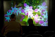 Denver Botanic Gardens, Re-branding & capital campaign kick-off