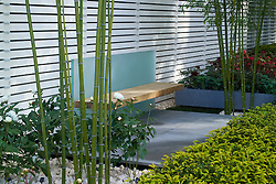 Wood and glass bench with bamboo Phyllostachys iridescens on either side. In the Grove Garden. Design: Christopher Bradley-Hole - Chelsea 2005