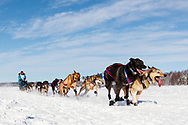 Musher Misha Wiljes after the restart in Willow of the 46th Iditarod Trail Sled Dog Race in Southcentral Alaska.  Afternoon. Winter.