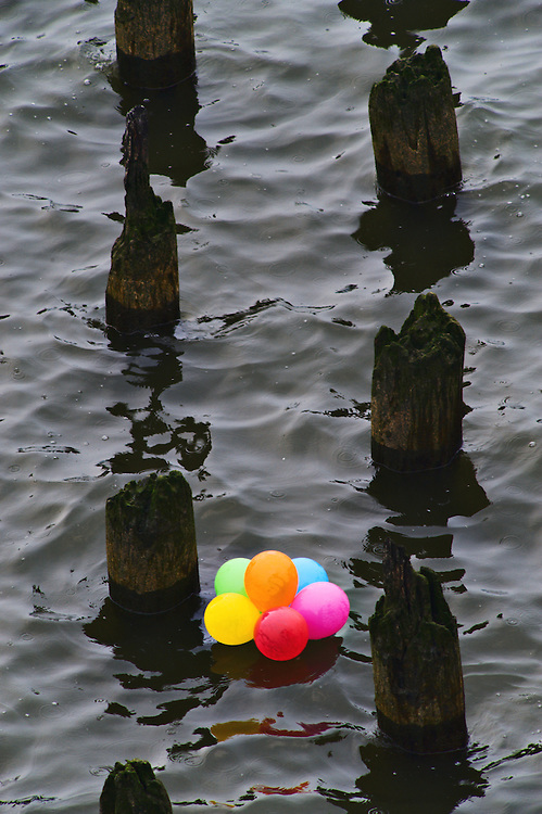 Bundle of colorful balloons floating in Hudson River in between rotted pilings