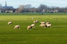 Aetsveld, Weesp, Noord Holland, Netherlands