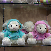 Cuddly sheep toys at Rainbow Springs Shop; Fairy Springs Road. Rotorua, New Zealand. 10th December 2010 Photo Tim Clayton.