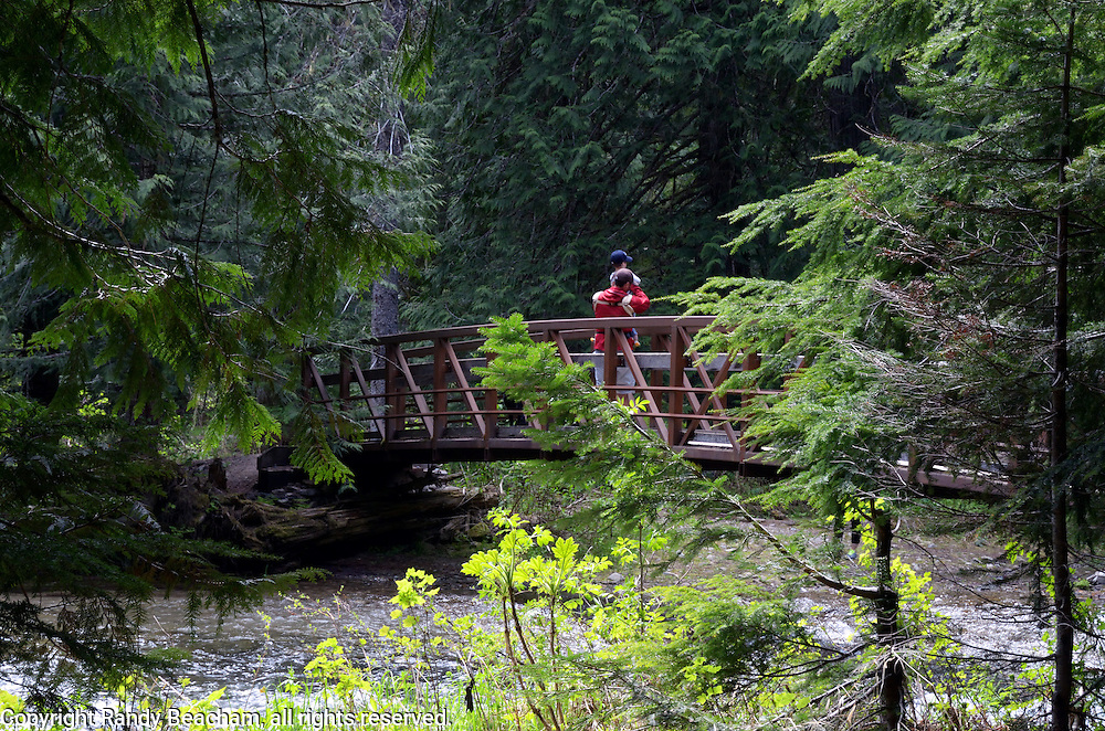 Father and son on a foot bridge over Ross Creek in the Ross Creek Cedars Research Natural Area. Cabinet Mountains in the Kootenai National Forest, northwest Montana.