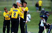 Wellington's James Franklin celebrates with his team.<br /> State Cricket Max final played between the Auckland Aces and the Wellington Firebirds on 18 November, 2001.<br /> Copyright photo: Sandra Teddy / www.photosport.co.nz