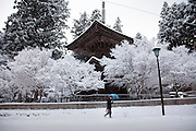 (En) January 2010 - Koyasan, Japan.  On the streets of the little town of Koyasan. (Fr) Janvier 2010 - Koyasan, Japon. Dans les rues de la petite ville de Koyasan.