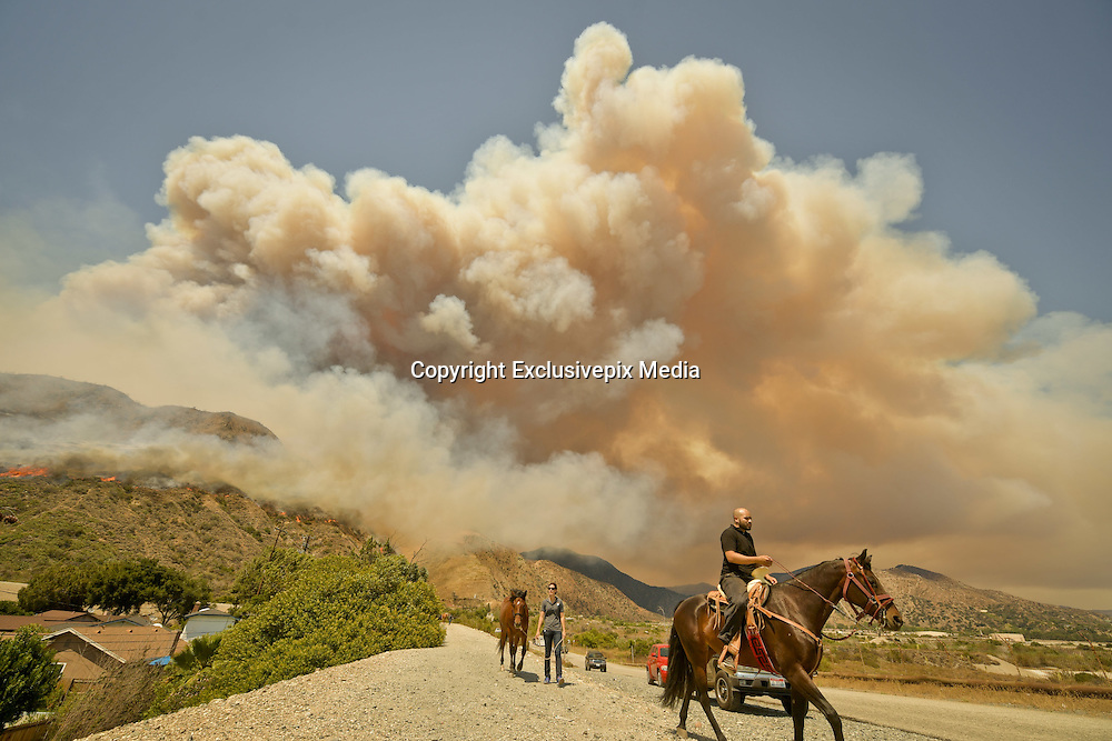 June 20, 2016 - Duarte, California, U.S. - Residents evacuate horses from stables off Fish Canyon Rd as the Fish Fire burns in the background, above Duarte and Los Angeles County. The fire was 1,400 acres at 2:50pm.<br /> &copy;Exclusivepix Media