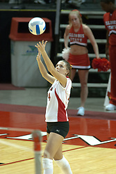 29 October 2005: Redbird Ashley Grubb serving. In three games, the Illinois State Redbirds ran past the Salukis of Southern Illinois University. The matchup took place at Redbird Arena on the campus of Illinois State University in Normal IL
