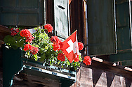 Geraniums in bloom with a Swiss flag in a window box of a traditional Swiss home in Gsteig, Switzerland