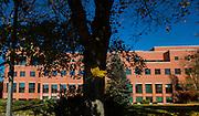 Fall Colors. (Photo by Gonzaga University.)