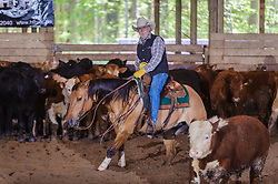 May 20, 2017 - Minshall Farm Cutting 3, held at Minshall Farms, Hillsburgh Ontario. The event was put on by the Ontario Cutting Horse Association. Riding in the 25,000 Novice Horse Non-Pro Class is Don Vincent on Lil Hypnotic owned by the rider.