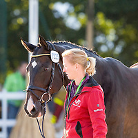 Dressage - Horse Inspection