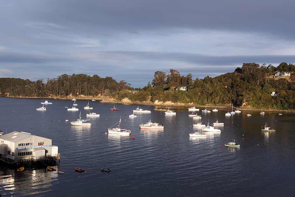 Last sunlight on Halfmoon Bay in Stewart Island