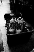 Acquaviva delle Fonti 30/10/2010, scarpe sporche di terra appoggiate su di una cassetta piena di olive....La raccolta delle olive e la produzione dell'olio extravergine sono un rituale che si protrae da moltissimo tempo in Puglia, questo avviene solitamente nel periodo che va da novembre a dicembre, mentre il lavoro di preparazione e coltivazione si svolge lungo tutto l'arco dell'anno..La raccolta è seguita nella maggior parte dei casi, quando le olive non vengono vendute all'ingrosso, dalla molitura presso gli oleifici per la produzione di quello che da queste parti viene chiamato anche oro verde..