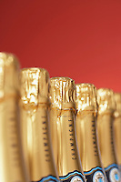 Row of champagne bottles close-up selective focus