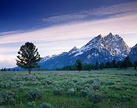 Teton Range from Sagebrush Flats, Grand Teton National Park, Wyoming USA
