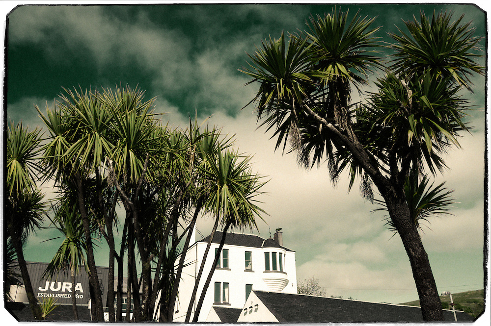 Jura distillery with palm trees