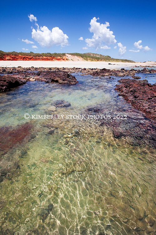 Small fish swim in a shallow rockpool near Quandong Point on the Dampier Peninsula.  The site is likely to be part of the proposed LNG gas hub, to be built between James Price Point and Quandong Point.