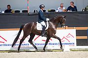 Lars op t Hoog - Handretti<br /> KWPN Kampioenschappen 2017<br /> © DigiShots