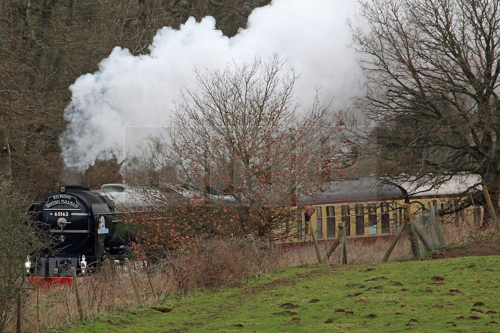 © Licensed to London News Pictures. 06/02/2016. The famous steam train the British Pullman pictured on an excursion in to the Surrey Hills. The locomotive left Clapham, crossed the Thames at the railway bridge before heading down in to the Surrey Hills Credit: Rob Powell/LNP