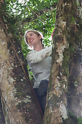 Theresa Meacham in the fork of a tree she just climbed to collect an orchid