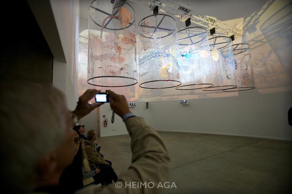 "dOCUMENTA (13) in Kassel, Germany..Documenta-Halle..Nalini Malani. ""In Search of Vanished Blood"", 2012."