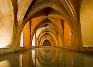 The baths of Dona Maria de Padilla, located in a lower level of the Real Alcazar in Seville, Spain.