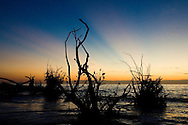 Sunset at Beer Can Island on Florida's Gulf Coast.