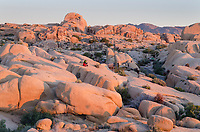 Couple watching sunrise at Jumbo Rocks area of Joshua Tree National Park California