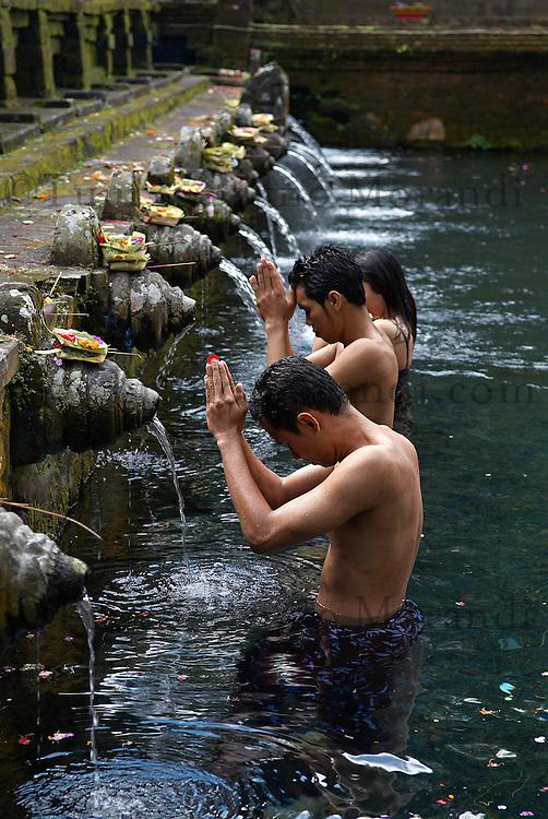 Indonesie. Bali. Bains publics sacres au temple de Tirta Empul dans les environs d'Ubud. // Indonesia. Bali. Temple Tirta Empul. Religious ceremony. Ubud area.
