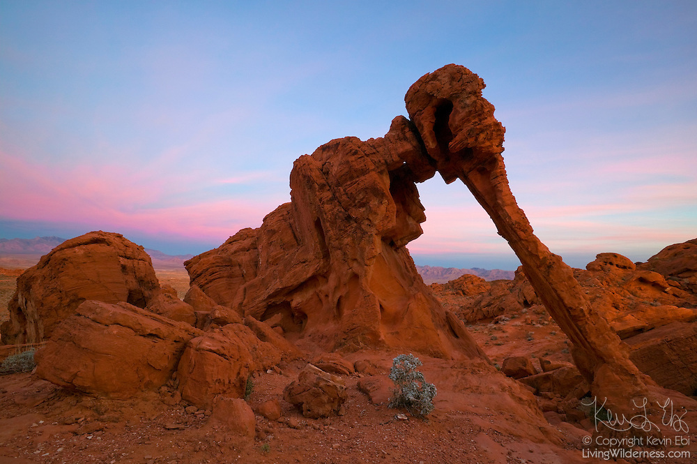 Elephant Rock, a natural sandstone arch that resembles an elephant with a long trunk, stands at the east side of the Valley of Fire State Park in Nevada.