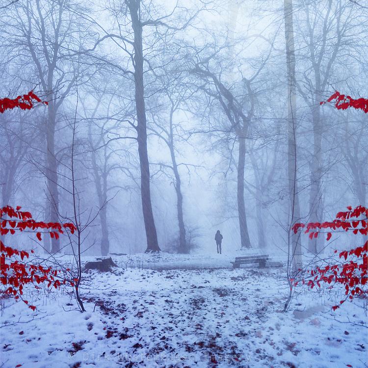 Man walking through a winter forest<br /> http://www.westend61.de/koala2/imgsearch.html?number=DWI000291&amp;mode=pv