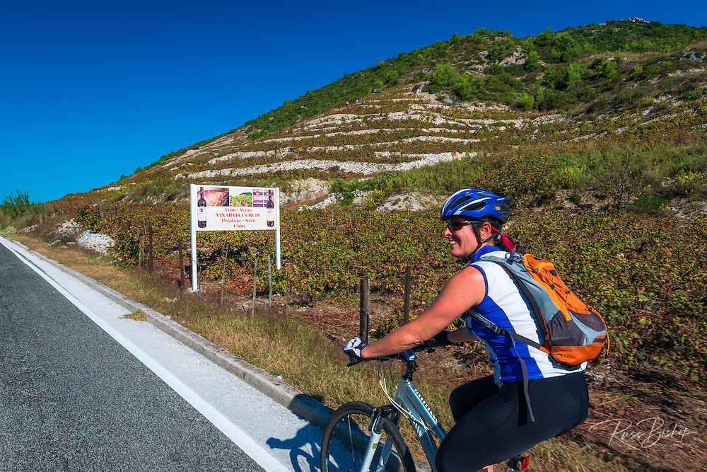 Cycling through wine country vinyards on Pelješac Peninsula, Dalmatian Coast, Croatia