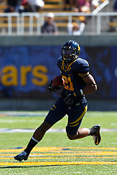 BERKELEY, CA - SEPTEMBER 08: Wide receiver Keenan Allen #21 of the California Golden Bears rushes up field against the Southern Utah Thunderbirds during the fourth quarter at Memorial Stadium on September 8, 2012 in Berkeley, California. The California Golden Bears defeated the Southern Utah Thunderbirds 50-31. (Photo by Jason O. Watson/Getty Images) *** Local Caption *** Keenan Allen