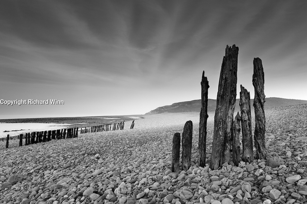 The remains of some old groynes located just along the beach from Porlock Weir, in the direction of Porlock Marshes, with Bossington Hill ni the background.