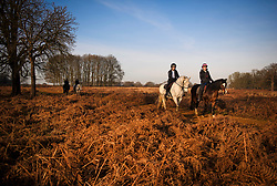© Licensed to London News Pictures. 04/01/2019. London, UK. A group of women rise horses through Richmond Park, West London on a cold winter morning, as temperatures across the UK drop dramatically. Large parts of the UK are expecting heavy snowfall in the early parts of 2019 following unusually mild temperatures for most of the winter. Photo credit: Ben Cawthra/LNP
