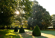 Sunrise over topiary cones in the garden atChenies Manor House, Chenies, Rickmansworth, Buckinghamshire, UK