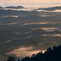 View of sun setting over misty hills, Gunung Silam, Sabah, Malaysia, Borneo, South East Asia.